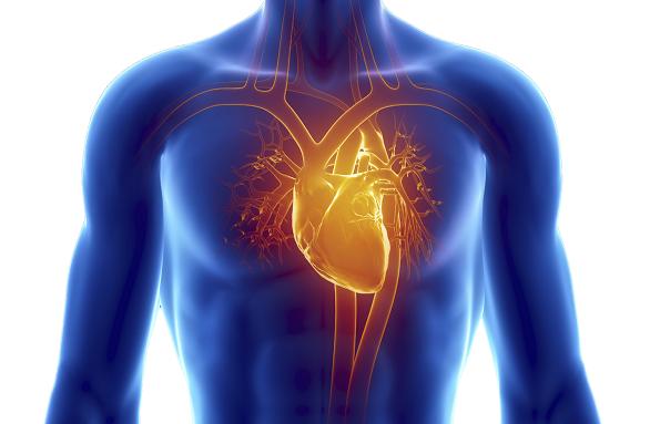 Cardiac-Autonomic